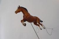 61_caballovolandoweb.jpg